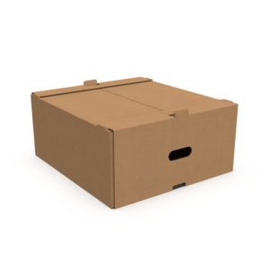 Grocery Delivery Box Closed Top Kraft