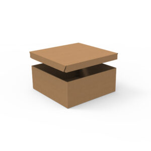 Body cover delivery box Kraft